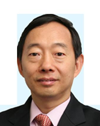 楊洪興教授的相片