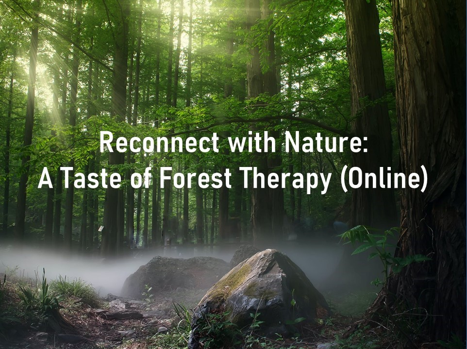 Banner of Reconnect with Nature: A Taste of Forest Therapy (Online)