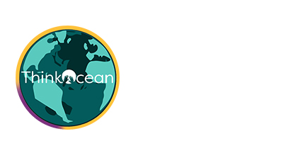 Think Ocean Logo